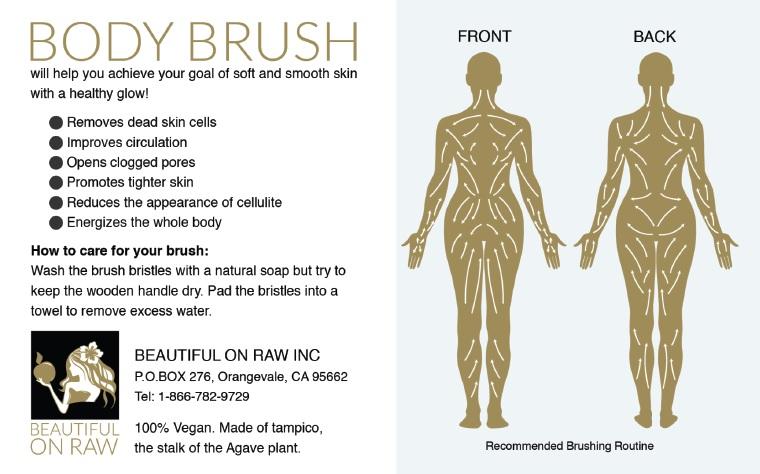 Body Brush insert
