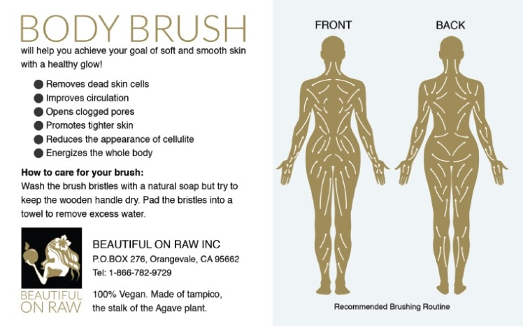 Body Brush insert